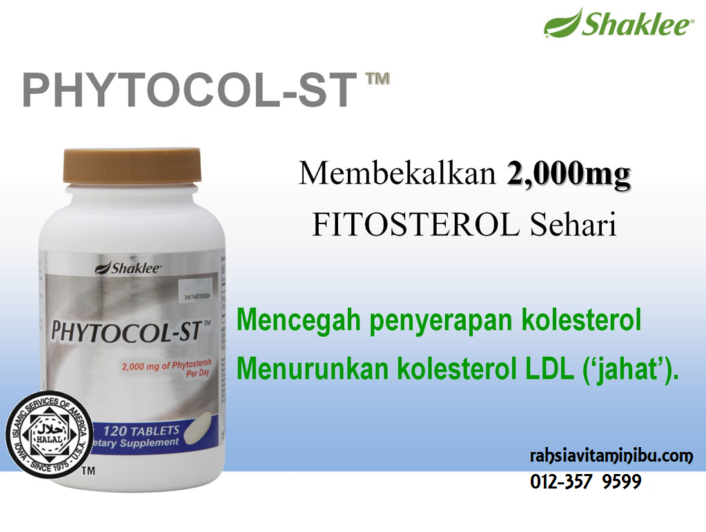 phytocol-st, rendang dan lemang
