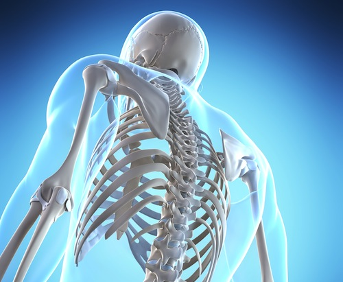 OsteMatrix Untuk Tulang Yang Kuat